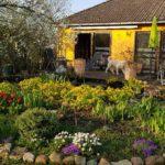 Gepflegter Bungalow in ruhiger Wohnlage – Warberg